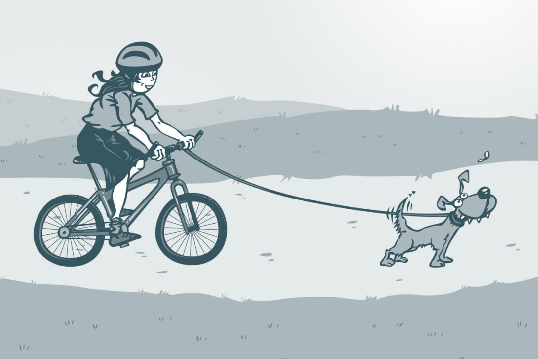 Jízda se psem